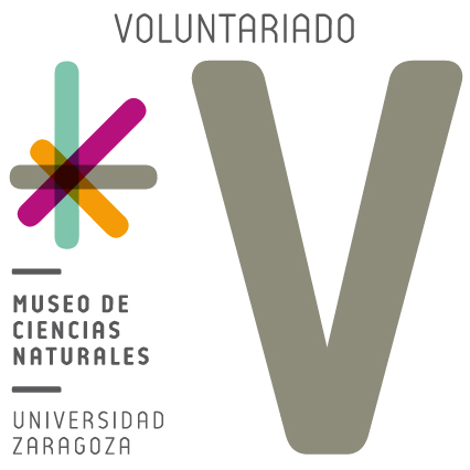 LOGOTIPO VOLUNTARIADO-01[1120]